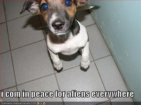 i com in peace for aliens everywhere
