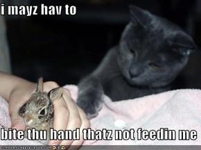 i mayz hav to  bite thu hand thatz not feedin me