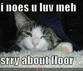 i noes u luv meh  srry about floor