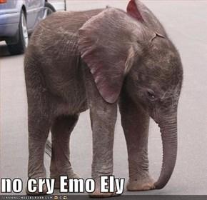 no cry Emo Ely