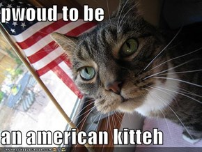 pwoud to be  an american kitteh