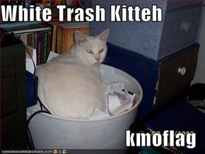 White Trash Kitteh  kmoflag