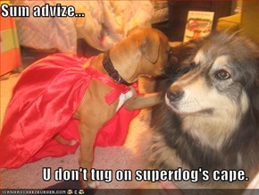 Sum advize...   U don't tug on superdog's cape.