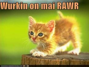 Wurkin on mai RAWR