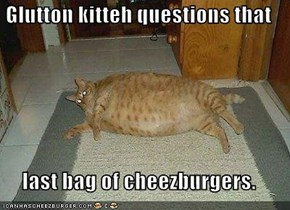 Glutton kitteh questions that  last bag of cheezburgers.