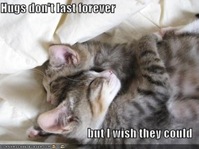 Hugs don't last forever  but I wish they could