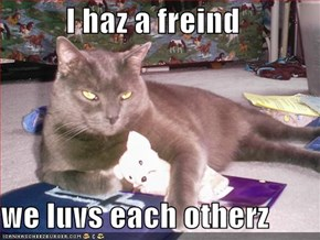 I haz a freind  we luvs each otherz