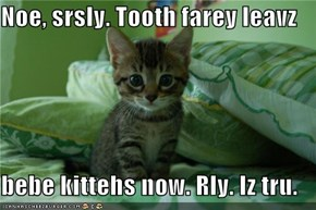 Noe, srsly. Tooth farey leavz  bebe kittehs now. Rly. Iz tru.