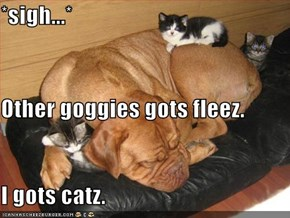 *sigh...* Other goggies gots fleez. I gots catz.