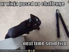 ur ninja posed no challenge   next time send two