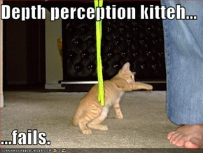 Depth perception kitteh...  ...fails.