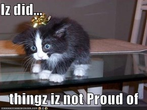 Iz did...     thingz iz not Proud of
