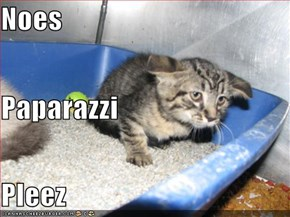 Noes Paparazzi  Pleez