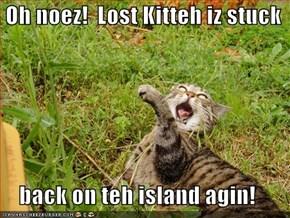 Oh noez!  Lost Kitteh iz stuck      back on teh island agin!