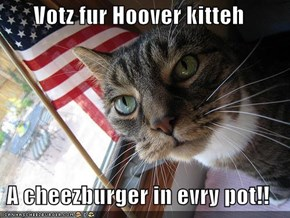 Votz fur Hoover kitteh  A cheezburger in evry pot!!