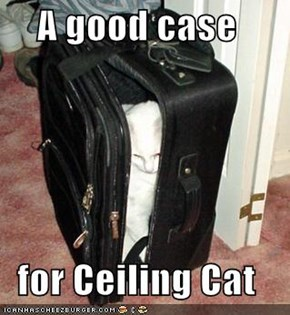 A good case  for Ceiling Cat