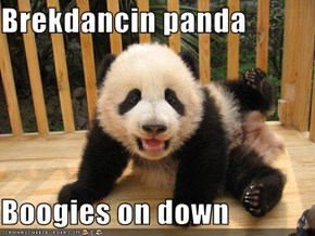 Brekdancin panda  Boogies on down