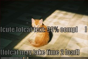 [cute lolcat text: 90% compl      ] (lolcat may take time 2 load)