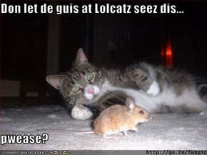 Don let de guis at Lolcatz seez dis...  pwease?