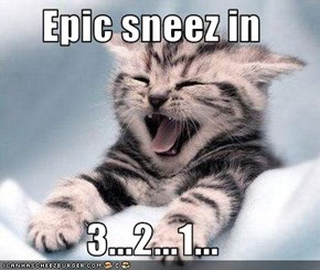 Epic sneez in  3...2...1...