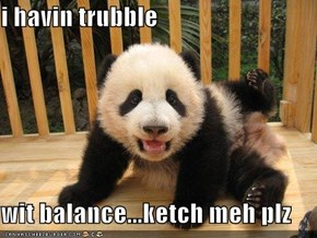 i havin trubble  wit balance...ketch meh plz