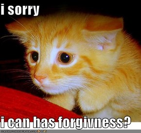 i sorry  i can has forgivness?