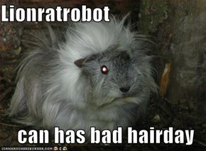 Lionratrobot   can has bad hairday