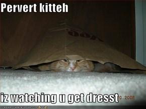 Pervert kitteh   iz watching u get dresst