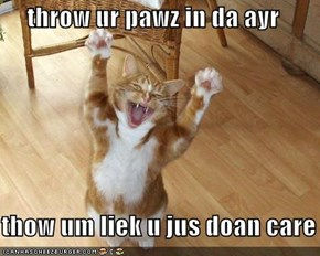 throw ur pawz in da ayr  thow um liek u jus doan care