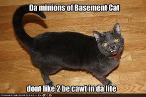 Da minions of Basement Cat