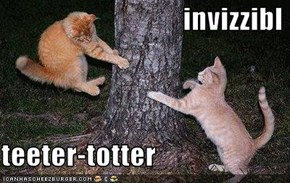 invizzibl  teeter-totter