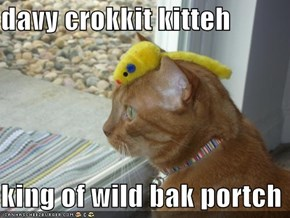 davy crokkit kitteh  king of wild bak portch