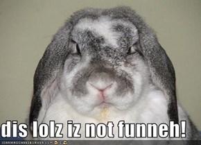 dis lolz iz not funneh!