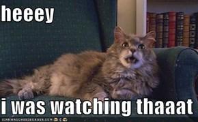 heeey  i was watching thaaat