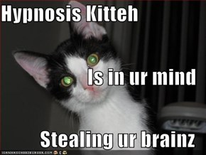 Hypnosis Kitteh  Is in ur mind Stealing ur brainz