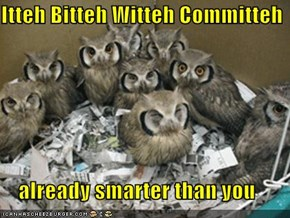 Itteh Bitteh Witteh Committeh      already smarter than you