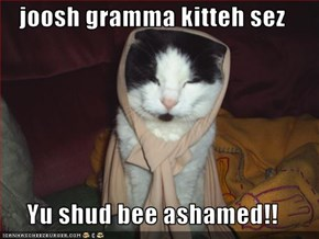joosh gramma kitteh sez  Yu shud bee ashamed!!