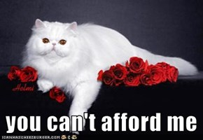 you can't afford me