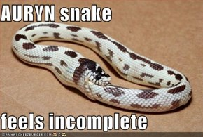 AURYN snake  feels incomplete