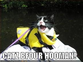 CATZ BFOUR HOOMAN!