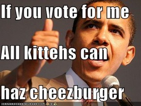 If you vote for me All kittehs can haz cheezburger