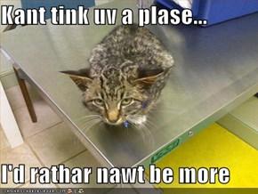Kant tink uv a plase...  I'd rathar nawt be more