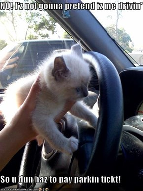 NO! I'z not gonna pretend iz me drivin'  So u dun haz to pay parkin tickt!