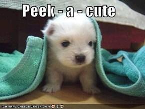 Peek - a - cute