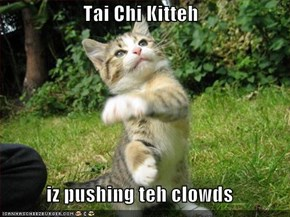 Tai Chi Kitteh  iz pushing teh clowds