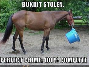 BUKKIT STOLEN.  PERFECT CRIME: 100% COMPLETE