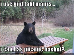 i use gud tabl manrs...  i can has picanic basket?