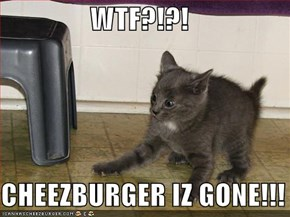 WTF?!?!  CHEEZBURGER IZ GONE!!!
