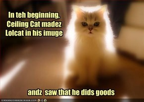 In teh beginning,  Ceiling Cat madez Lolcat in his imuge
