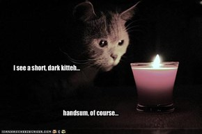 I see a short, dark kitteh...